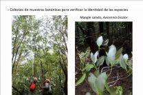 Inventario de flora y vegetación.