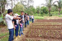 Jóvenes miembros del Grupo de Investigación Coclé Avanza reciben explicación sobre cultivo de mostaza china.