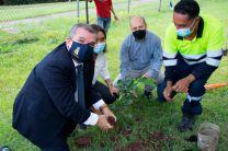 Decano de la FIM, el Dr. Julio Rodríguez, en la siembra de plantones.