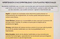 Planta Medicinales.