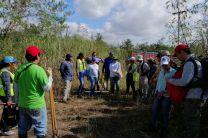 Primera Gira de Campo 2020 a la torre de manglar.