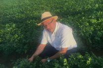 Ing. Aníbal Fossatti en visita a los procesos de cultivos de perejil, en Israel.