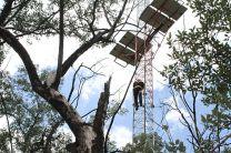 Torre de Medición para medir flujo de carbono.