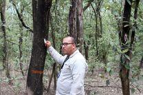 El Biologo- Botánico José Ulises Jiménez, explica a los visitantes acerca de las propiedades de los árboles para soportar la salinidad de los manglares.