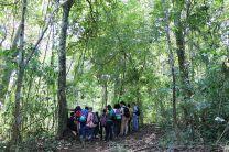 Primera Parcela Permanente de Monitoreo de Bosques en la UTP