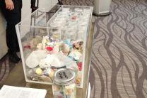 Impactos del Micro plástico encontrados en playas de Panamá y Colón.