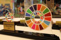 Reconocimiento de los ODS.