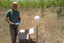 Dr. Francisco López Serrano, colocando sistema de medición.