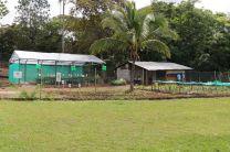 Este vivero de la Escuela Los Lajones sirve de suministro a los comedores escolares de otras comunidades aledañas.