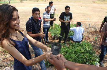 Estudiantes del Centro, en la preparación de los plantones y del vivero.