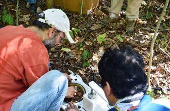 El estudio consiste en poner cámaras de respiración de suelos con sensores.
