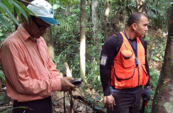 Las parcelas están localizadas en el área de Cerro Pelado, en Gamboa.